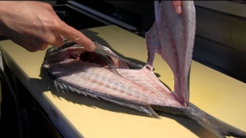60 second skill filleting a fish with a japanese deba knife for Fish cleaning knife