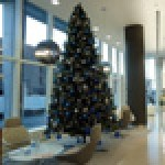 Ambius' contemporary Christmas decorations are available to the on-trade market
