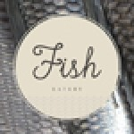 Fish Eatery's location is next to Steak restaurant and below Twelve Picardy Place boutique Hotel